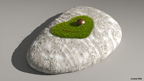 Pebble with moss growing on it